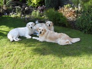Medodaine Zetah with her friends