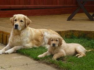 Skyla with her mum Sookie