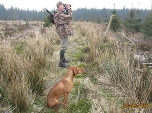 Rez Marking a Roe Buck