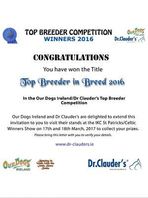 Delightbull Top Breeder 2016