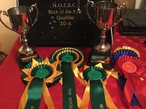 Wins from NOERC Feb 2016