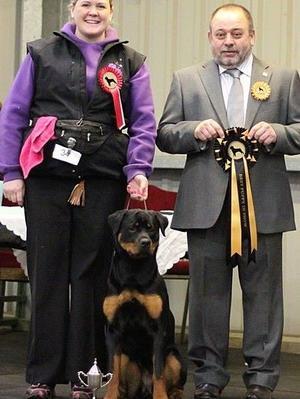 Best Puppy In Show at ECRC aged 7.5 months
