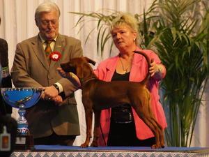 Affy winning Best Puppy in Show. Lux International