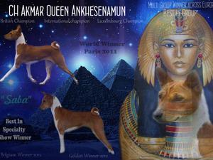 BISS INT, LUX, BEL, CH, NL & UK Ch Akmar Queen Ank