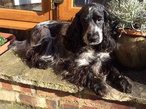 Nellie. The proud mum.