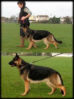 Zeina. Heel & Stance