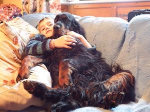 Poppy having cuddles on the sofa