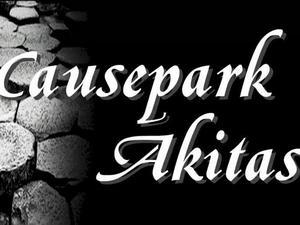 Causepark Akitas