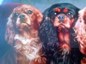 Esme, his mum, Clara, his granny