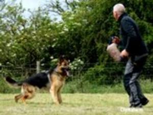 Xaska training on the sleeve