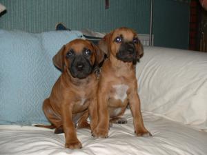 Sol & Mavis Posing.