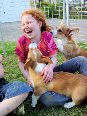 Kilvroch puppies & friend