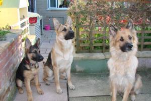 Caesar, Big Sister Cleo and Mum