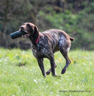Bexs i can fetch it mum!!
